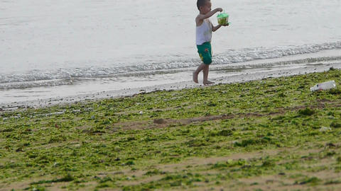Child little boy play digging sand at... Stock Video Footage