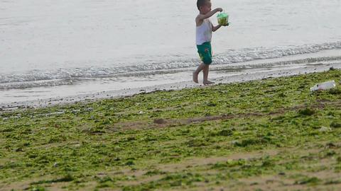 Child little boy play digging sand at beach.seaweed,seaweed,enteromorpha,tide,ti Footage
