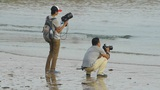Professional photographer and his assistant at beach.tide,tidal Footage