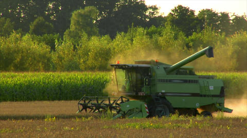 10725 combine harvester rye field long Stock Video Footage