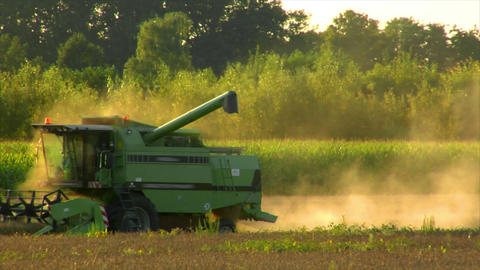 10725 combine harvester rye field long Stock Video Footage