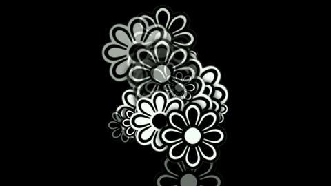 wild daisy flower,spring scence,wedding background Stock Video Footage