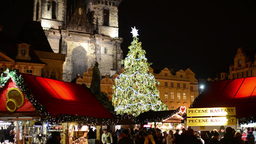 PRAGUE, CZECH REPUBLIC - DECEMBER 2013: Shining Christmas Tree with Christmas sh ビデオ