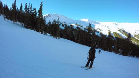 Alpine Skiing Stock Video Footage