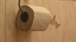 toilet paper on the toilet Footage