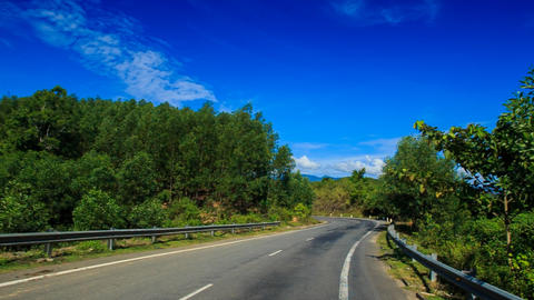 Camera Moves along Asphalt Road among Forest Footage
