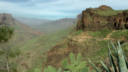 Spain Gran Canary Fataga 003 volcanic valley and a cactus Footage