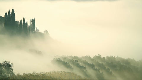 Fog Over the Vineyard in Tuscany Footage