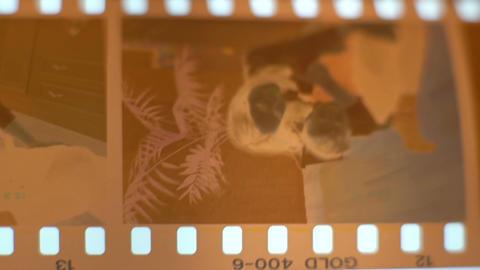 Old Negative Film Strip Footage