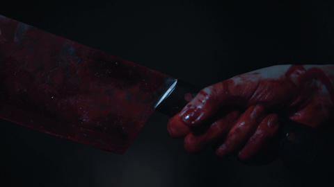 Insane murderer with bloody chopping-knife, violence and crime, closeup of hands Live Action