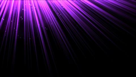 Animated Light Rays - Purple Animation