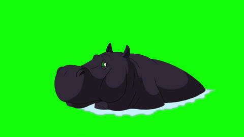 Black Big Hippo Open Mouth Animation