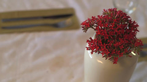 Man throws vase with red flowers off the table Footage