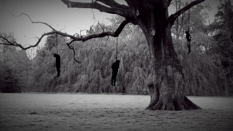 Dark hangman tree Filmmaterial