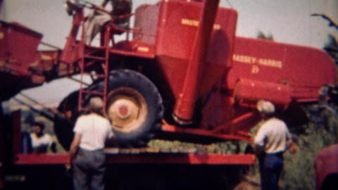 1951: Red Cassey Harris farm tractor loaded and moved flatbed truck Footage