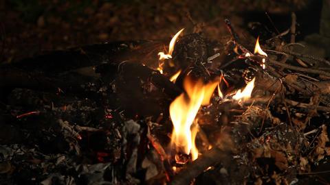 Closeup fire burning Live Action