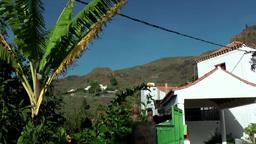Spain Gran Canary Fataga 027 idyllic house and a banana tree Footage
