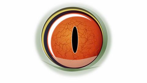 Blinking frog eye