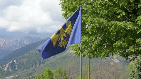 The Friuli-Venezia Giulia flag 画像