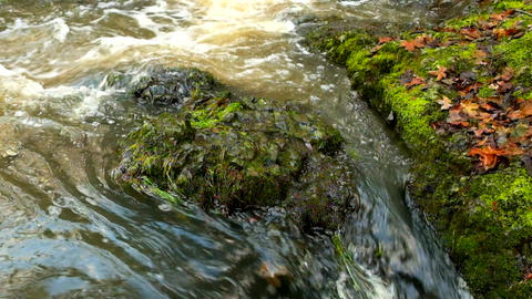 The colorful basalt stones in blurred water of mountain... Videos de Stock