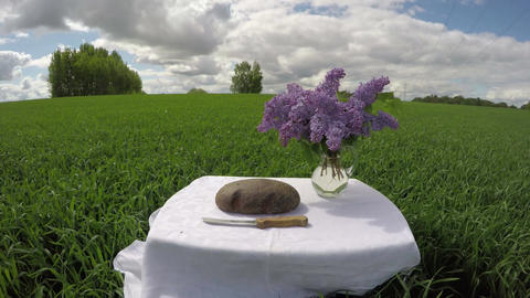 Bread and knife on table in wheat field in summer, time lapse 4K Footage