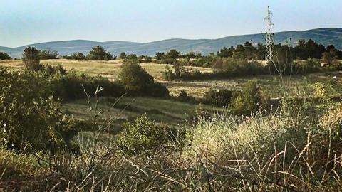 Wonderful scene of green landscape in summertime Footage