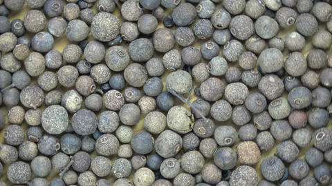 Rotating allspice Pimenta dioica background Footage