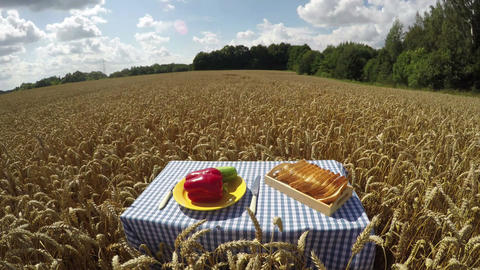 Bread and vegetables on the table in wheat field, time lapse 4K Footage