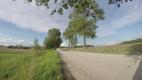 Country road with trees, time lapse 4K Footage
