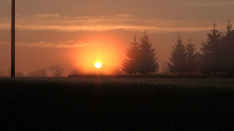 Sunrise in countryside Footage