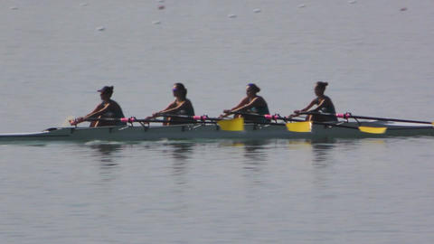 Rowing Championship Quad Scull Woman Race Footage