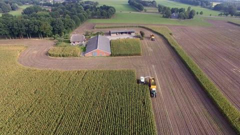 Aerial shot of Agriculture machine corn chopping Footage