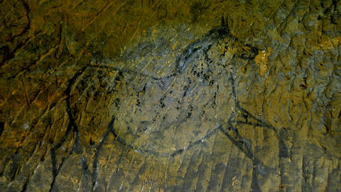 Discovery of prehistoric paint of horse in sandstone cave. Spotlight shines on h Footage