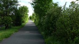 path with nature. gradually declining sun Footage