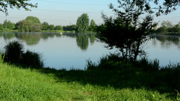 lake(shore) - with green nature (tree and grass) - cars and building in backgrou Footage