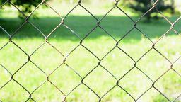 metal fence - in the background of grass Footage