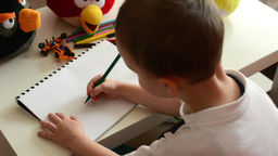 child(small boy) draws (paints) a picture with felt-tip - angry birds (stuffed t Footage