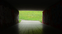 pedestrian underpass - dark - meadow with flowers in the background Footage
