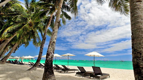 Tropical beach with palm trees, umbrellas and chairs for relaxation. Philippines Live Action