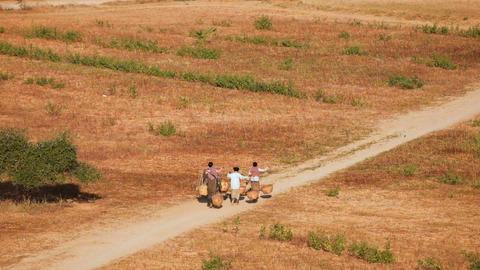 Burmese rural women carrying baskets through desert landscape. Bagan, Myanmar Footage