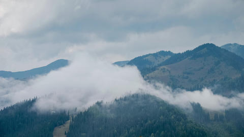 Time Lapse Clouds Moving Over Pine Tree Highland Forest. Foggy Morning Landscape stock footage