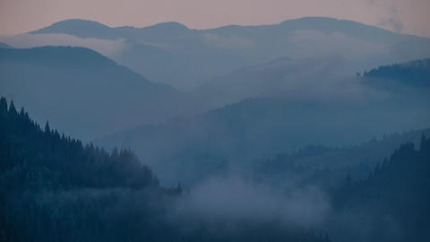 Time lapse clouds moving over pine tree highland forest. Foggy morning landscape Footage