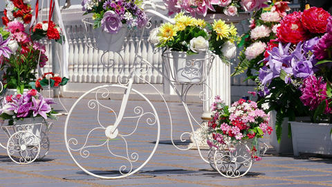 Decoration Bicycle Curved Shape Flowers 4k Image