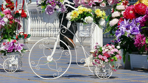 Decoration Bicycle Curved Shape Flowers Legs 4k Footage