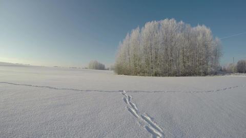 Feet tracks through snow field, time lapse 4K Footage