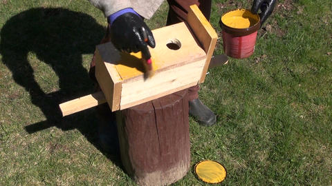 Man painting bird nesting box Footage