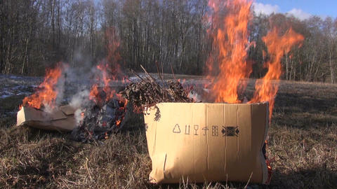 Cardboard boxes with organic rubbish burning in field Footage