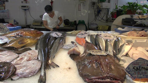 Fish market with freshly caught fish Footage
