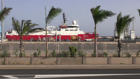Cruise ship in harbor with palm trees Footage