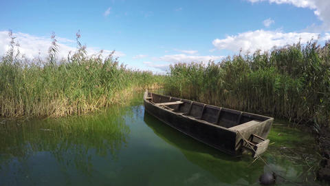 Boat between reeds, time lapse 4K Footage